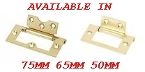 2 X Electro Brass Plated Flush Door Hinge With Screws